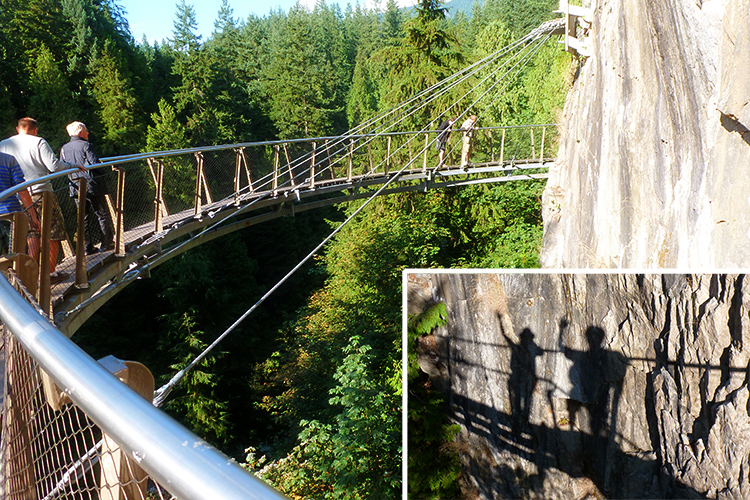 Suspension Bridge adventure