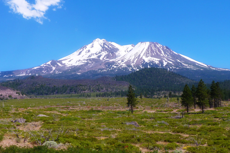 Mt Shasta_roadtrip