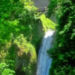 Lower Waterfall Multnomah Falls Bridge Portland Road Trip