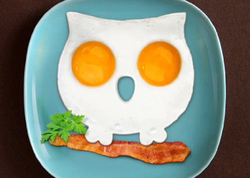 Funny Side Up Owl Shaped Egg Mold, $12.25
