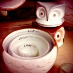 Cute Ceramic Owl Measuring cup Set