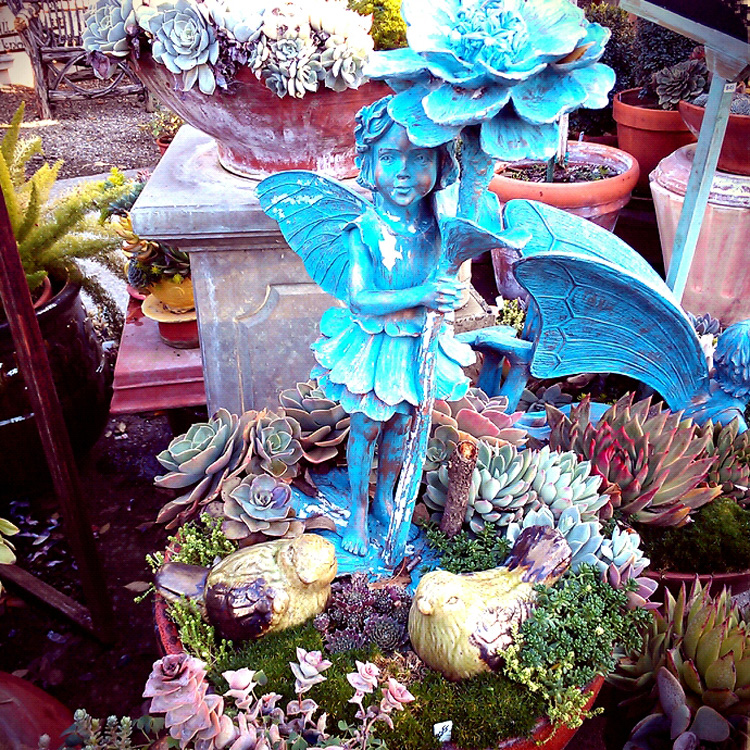 Los Olivos J Woeste Home Garden Treasures Succulents Fairy Wine Country Getaway California