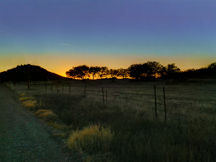 Scenic drive San Diego Julian Ramona Sunset tree Silhouette