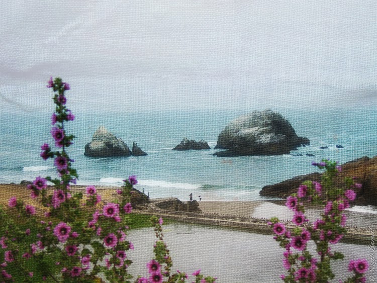 San Fran Sutro Baths Road Trip West Coast Shore Flowers  Artistic