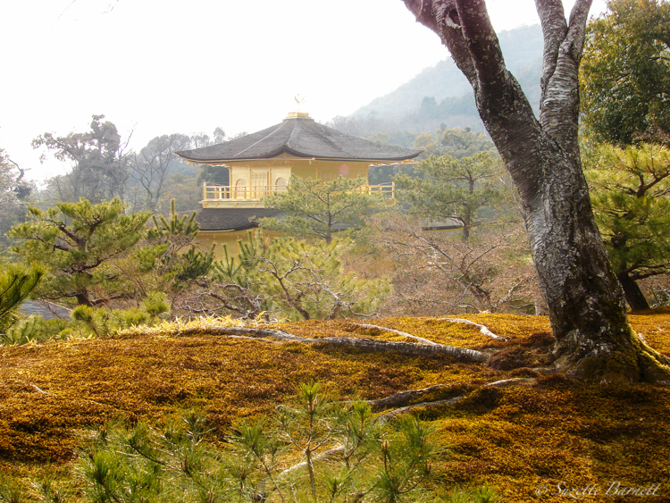 kyoto-travel-golden-temple-pavilion-kinkakuji-hilltop