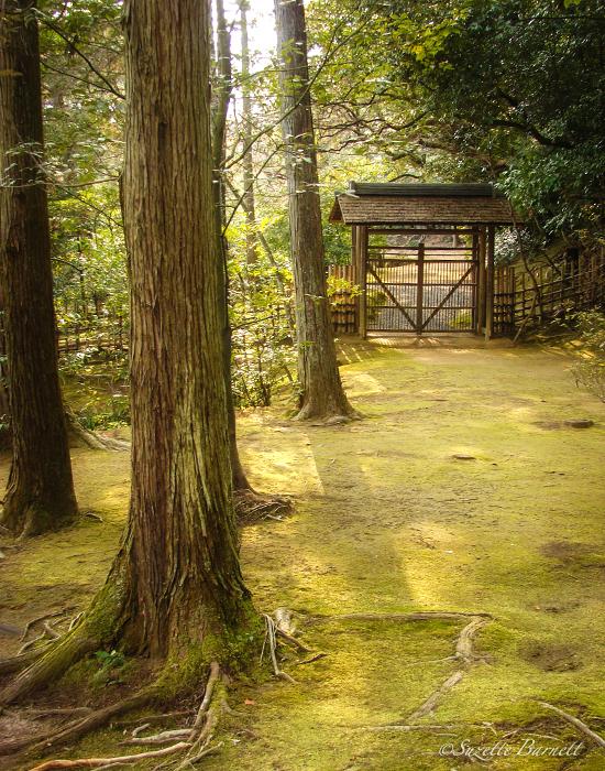 kyoto-travel-golden-temple-pavilion-kinkakuji-japanese-garden-fe