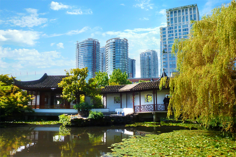 vancouver best chinese garden tranquility in the city