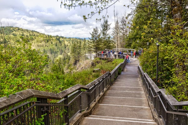 salish falls viewing platform