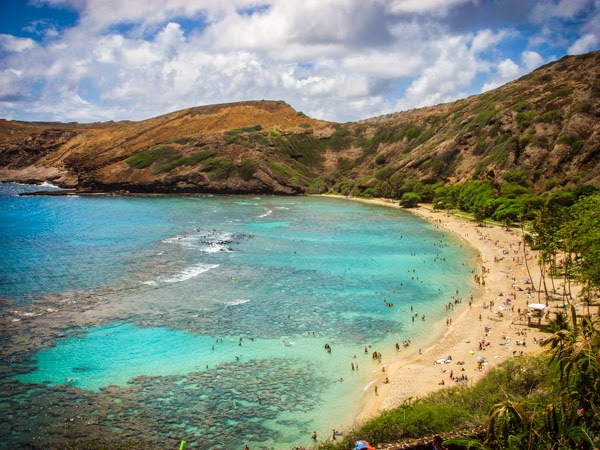 Find out more about hanauma bay the best snorkeling spot for Fishing spots oahu