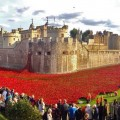 london_tower_poppies_pano