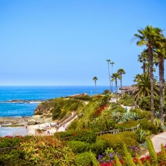 treasure_island_path_laguna_montage