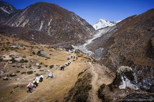 overlook yak delivery train Nepal