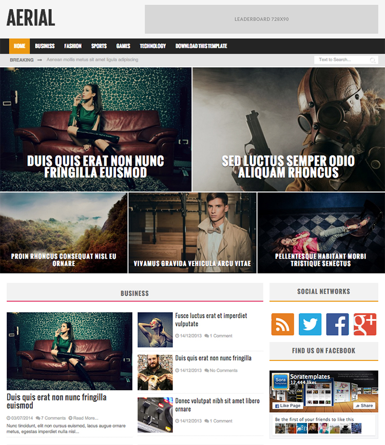Aerial blogger template