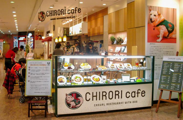 chirori dog cafe japan