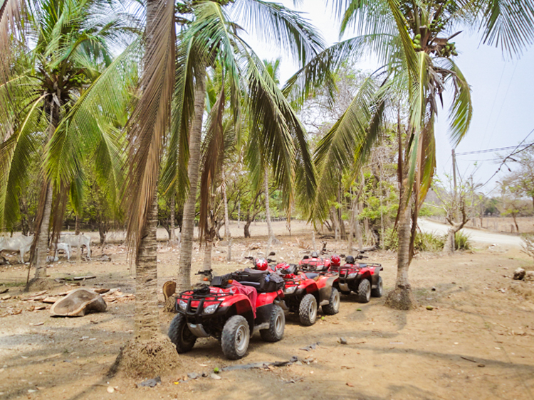 costa rica ATV in Nosara