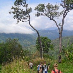 group of trekkers in Chiang Mai