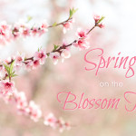 Spring on the Blossom Trail