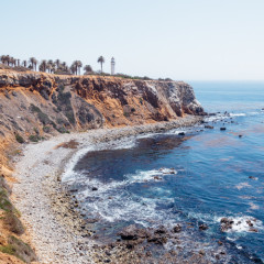 Palos_Verdes_Point_Vicente-446