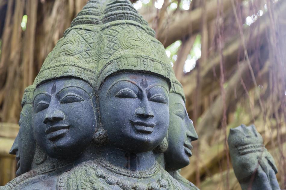 Kauai_Hindu_Monastery-8796