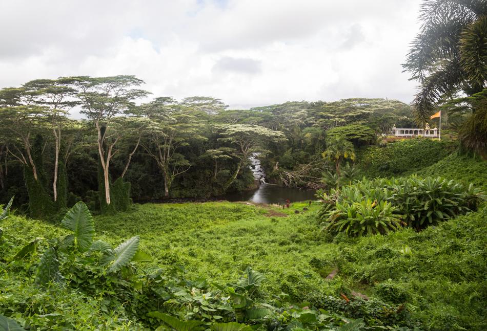 Kauai_Hindu_Monastery-8820