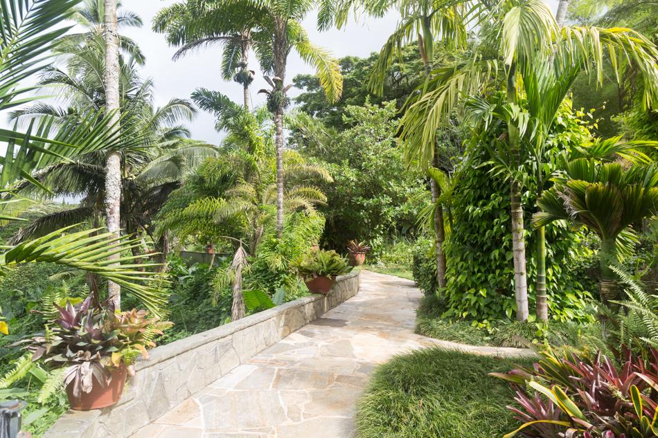 Kauai_Hindu_Monastery-8829