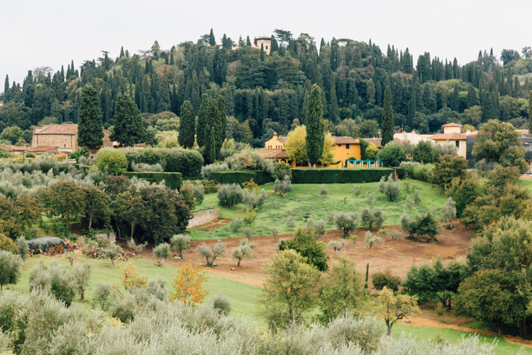 Florentine hillside