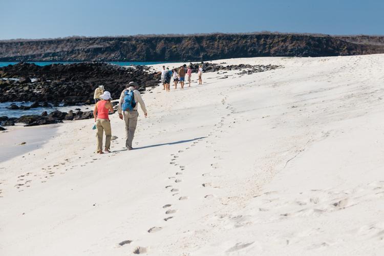 wildlife tour on mosquera island
