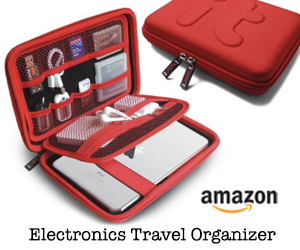 Electronics Travel Organizer